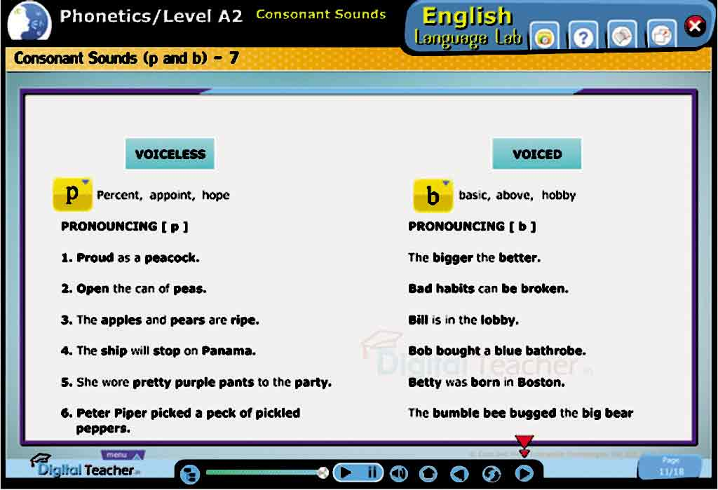 English Language Lab practical activity on Phonetic Charts and their various types of consonant sounds
